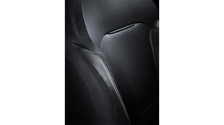 Estofos em couro carbono