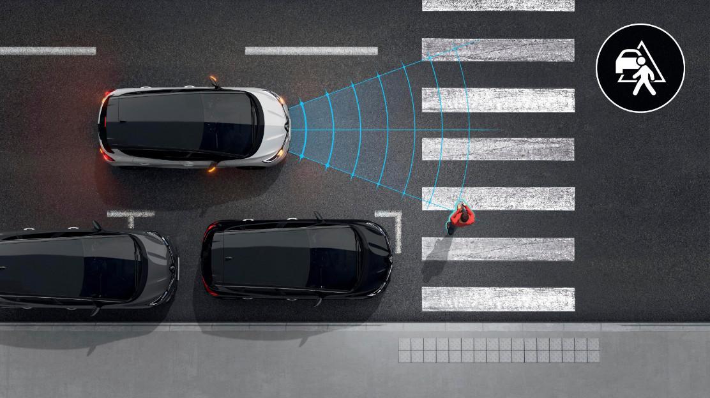 Actief noodremhulpsysteem AEBS met voetgangersdetectie